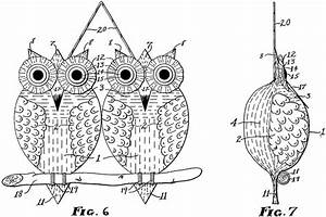 Diagram    Structure Simulating An Owl