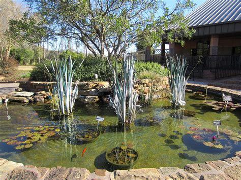 mercer arboretum and botanic gardens top 15 places to visit in houston