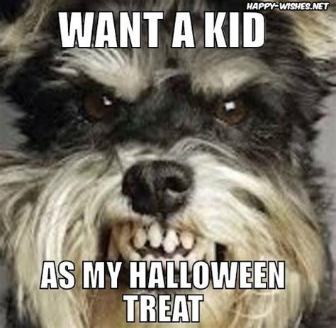 Funny Halloween Meme - 20 best happy halloween memes images happy wishes