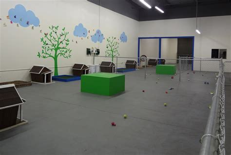 Dog Daycare Flooring, Kennel Flooring and Agility Flooring
