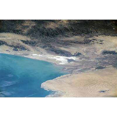 Lack of Freshwater Places Colorado River Delta Fish at