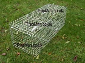 cat traps cat trap trap feral cat trap humane and effective