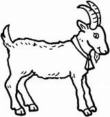Goat Coloring Pages Clip Clipart sketch template