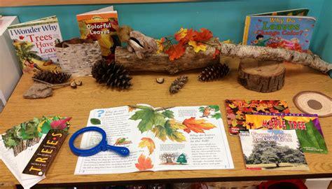 preschool leaf tree science center creations from 998 | 4af3df1256541f83c88700de6c3c3f81