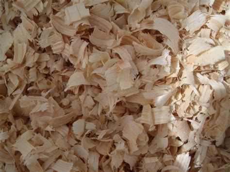Pine Bedding For Rabbits by Pine Wood Shavings For Horses