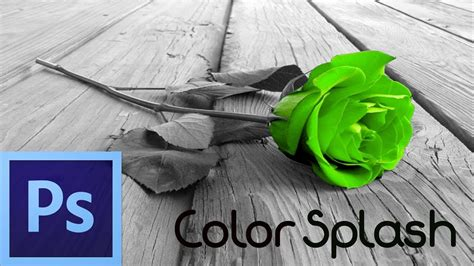 photoshop cs tutorial color splash effect  beginners