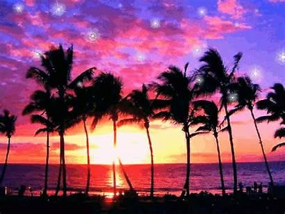 Sunset Purple Glitter Hawaii Vacation Ocean Gifs