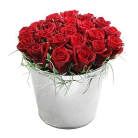 fleurs rouges en pot