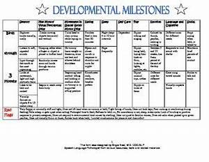 Developmental Milestones Developmental Milestones