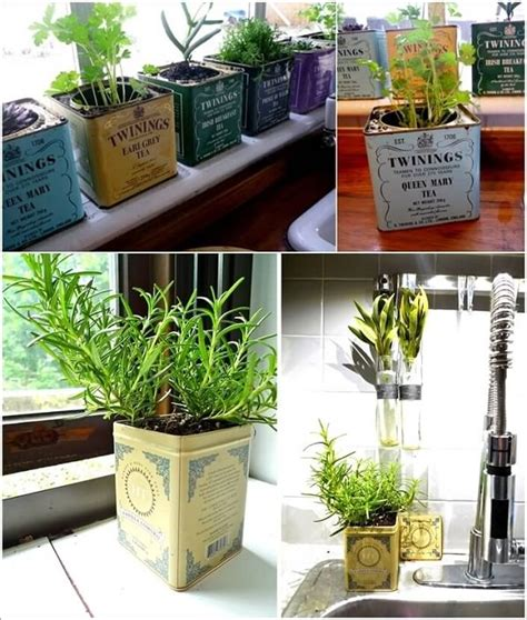 indoor herb garden ideas    inspiration