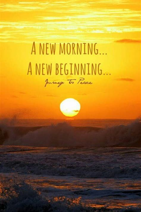 A New Morning, A New Beginning  Beautiful Minds  Pinterest  Beautiful Mind, Words Quotes And