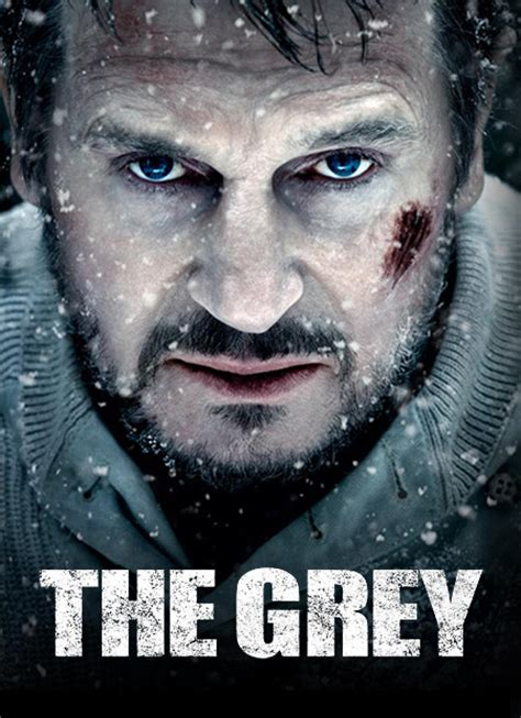 grey  review liam neeson  meditation