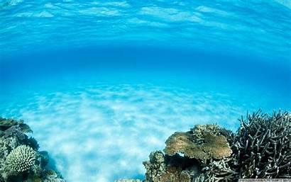 Underwater Desktop Ocean Summer Wallpapers 4k Water