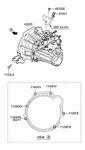 Hyundai Elantra Manual Transmission Diagram