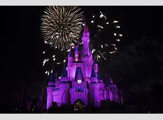 Some Disney World Attractions Remain Closed After