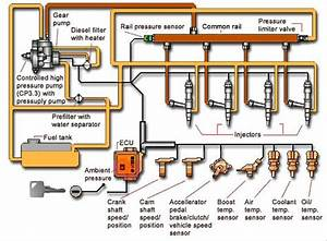 Isx Common Rail Fuel Line Diagram