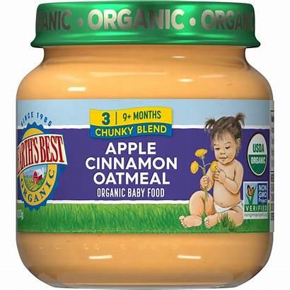 Cinnamon Apple Oatmeal Earth Babies Infant