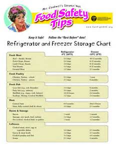 Food Storage Temperature Chart Template