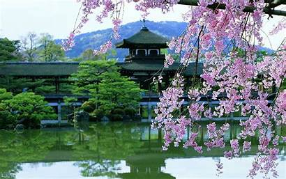 Japan Cherry Water Blossoms Architecture Flowers Asian