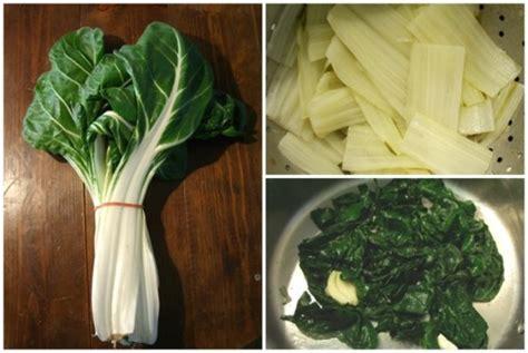 cuisiner le vert des blettes cuire à blanc des côtes de blettes et sauter le vert en