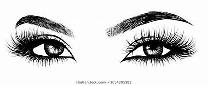 Vector Eyelashes Lashes Eyelash Drawn Hand Eyebrow