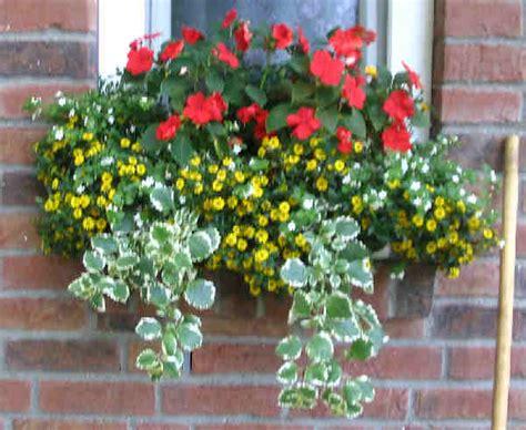 blumenkästen dekorieren ohne blumen balkonkasten pflanzbeispiele