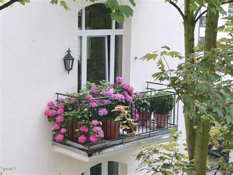 Den Balkon Mit Passenden Pflanzen Und Blumen Im September Beleben by Das Beste F 252 R Den Balkon Im Schatten Blumen Natur Und