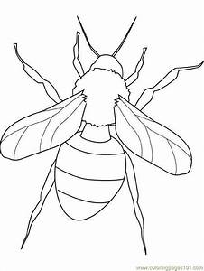 Free i for insects coloring pages