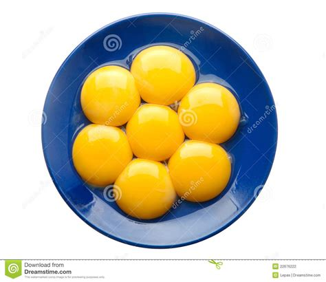Yolk Egg egg yolk yolk clipart clipground