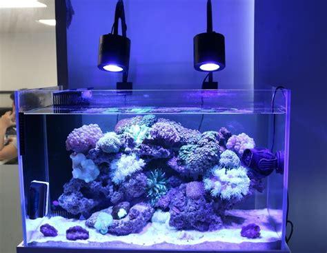 fish tank light fish tank light fixture dimmable led aquarium light for