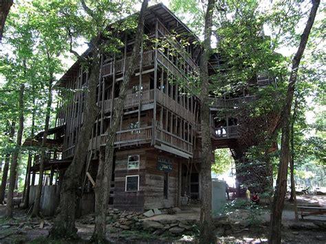 choeur de chambre une maison de 80 chambres dans un arbre à 30 mètres de