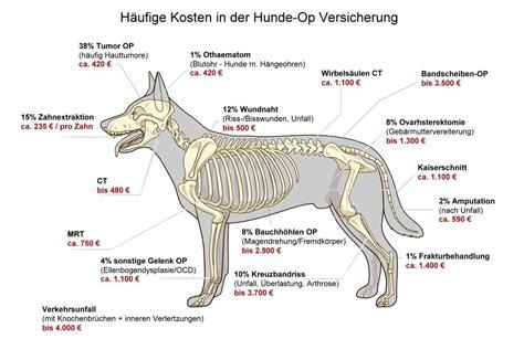 hunde op versicherung ausschluesse