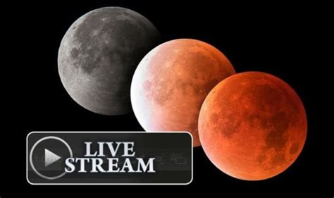 Eclipse 2021 LIVE stream: How to watch the Super Flower ...