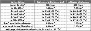Tarif Nettoyage Toiture Hydrofuge : nettoyage toiture prix zola sellerie ~ Melissatoandfro.com Idées de Décoration