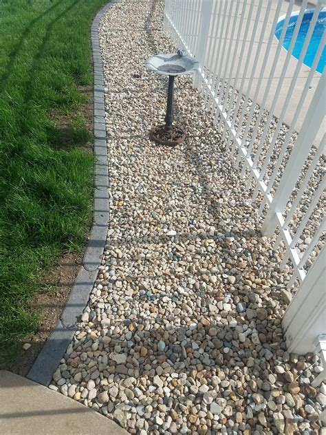 ground cover  pool sidewalk  fence trouble