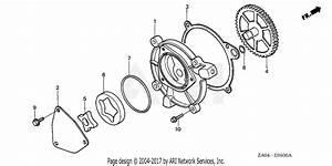 Wiring Diagram Honda Generator