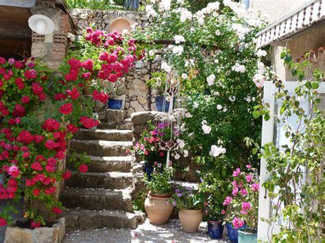 chambres d hotes les fleurs les fleurs chambres d 39 hôtes les oliviers en provence