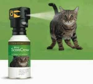 motion activated cat scarecrow animals animals yard using water air