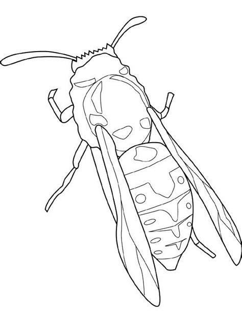 ausmalbild insekten insekten insekten ausmalbilder