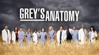 Grey s Anatomy Renewed...