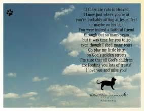 cat heaven cat heaven cat lover quotes sayings