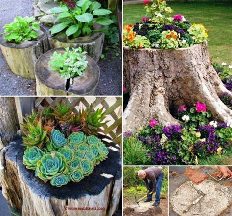 tree stump planter small space garden ideas to pep up the look of your house