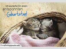 Geburtstagskarte mit Babykatzen Entspannter Geburtstag