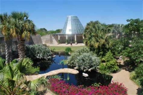 cultural at san antonio botanical garden traveling