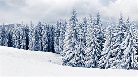 Winter Hd Desktop Wallpapers