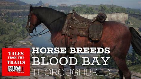 thoroughbred dead blood redemption horse bay rdr2 breeds cinematic