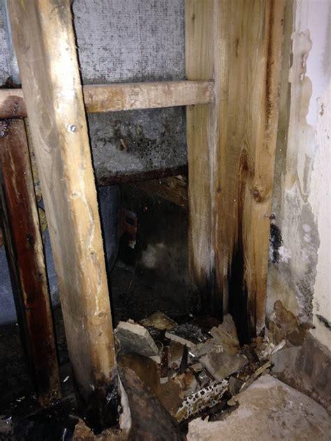 asbestos mould removal hamilton