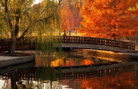 reflection  japanese bridge  jacob loose park autumn