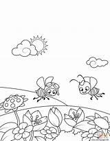 Coloring Pages Meadow Bees Printable Fly Print Flowering Muskrat Spring Drawing sketch template