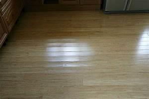 Cat pee on laminate wood floor wood floors for Cat urine on hardwood floors